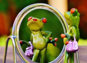 鏡を見る蛙
