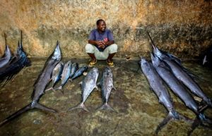 魚を売る黒人