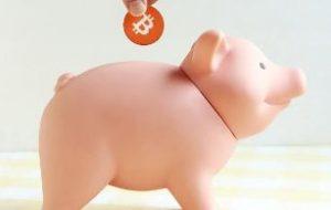 豚の貯金箱にお金をいれるところ