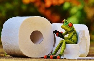 トイレットペーパーとカエルのオブジェ