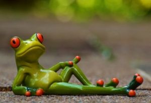 井の中で幸せに暮らす蛙、大海を知らずに大往生