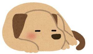 眠っている犬のイラスト