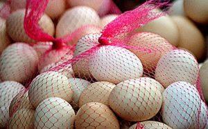 様々な色の卵