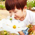 嗅覚を取り戻して人生を豊かに!鍛え直す3つのステップ