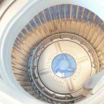 洗濯機のゴミ取りネットがカビの温床!?盲点も紹介します